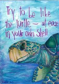 cropped-turtle-water-color-quote.jpg