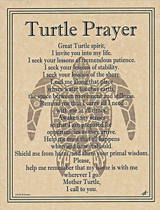 turtleprayer